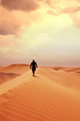 Bds_2209woestijn